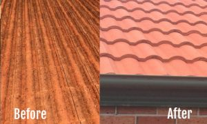 before-after-roof-cleaning